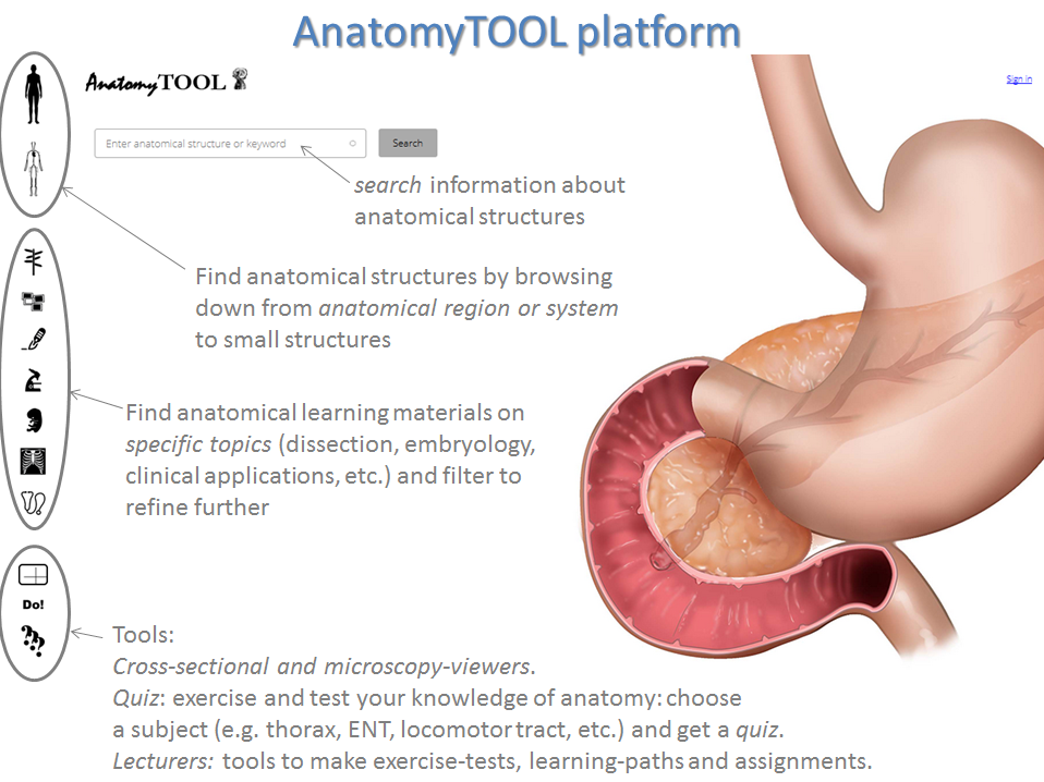 Tool Open Anatomy Learning Platform
